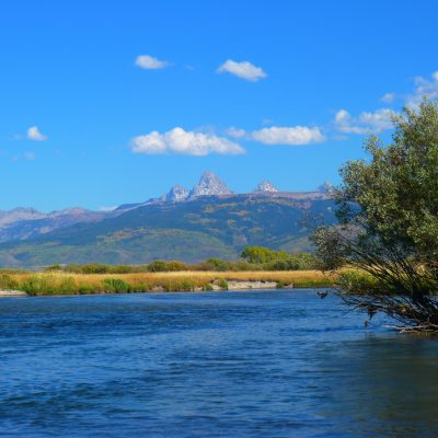 Teton River Gallery